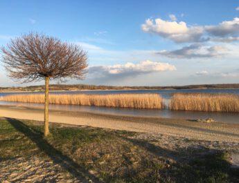 42,5 mln zł na Jezioro Tarnobrzeskie w ciągu 3 lat